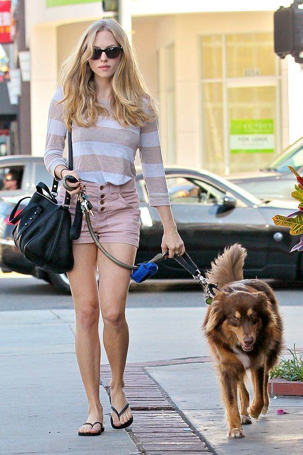 Amanda Seyfried Street Fashion Inspiration To Dog Lovers 187 Celebrity Fashion Outfit Trends