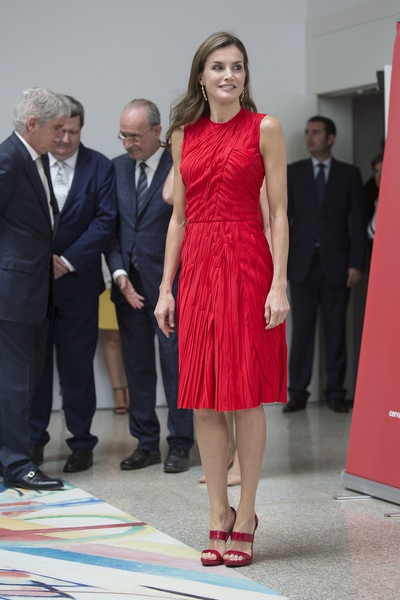 Queen Letizia of Spain looked simply chic in a red crinkle-effect midi dress by Nina Ricci while attending a Cervantes Institutes meeting.