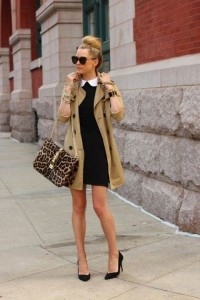 Coat Dress Outfit For Fall Fashion