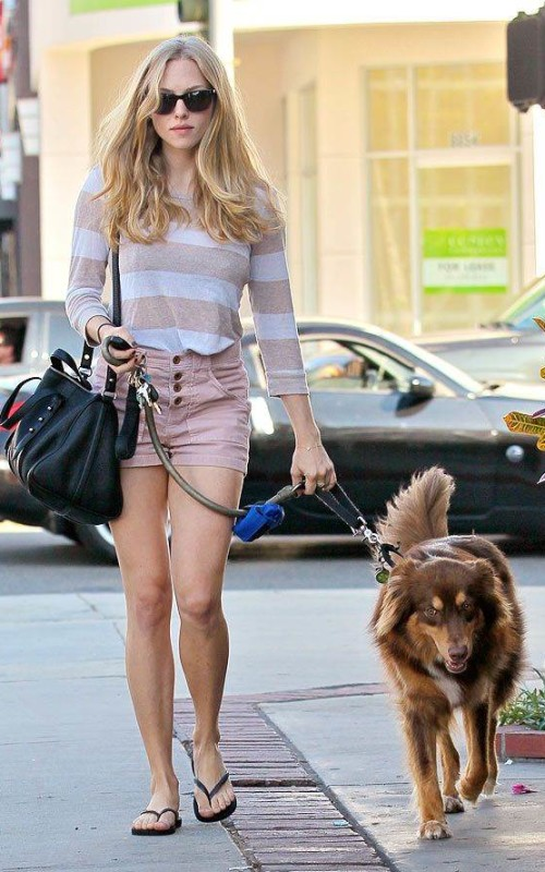 Amanda Seyfried – Street Fashion Inspiration To Dog Lovers