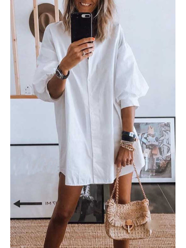 fashion casual lantern sleeve blouse dress for ladies
