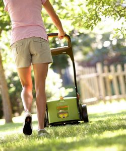 Expert Tips on Choosing the Perfect Lawn Mower